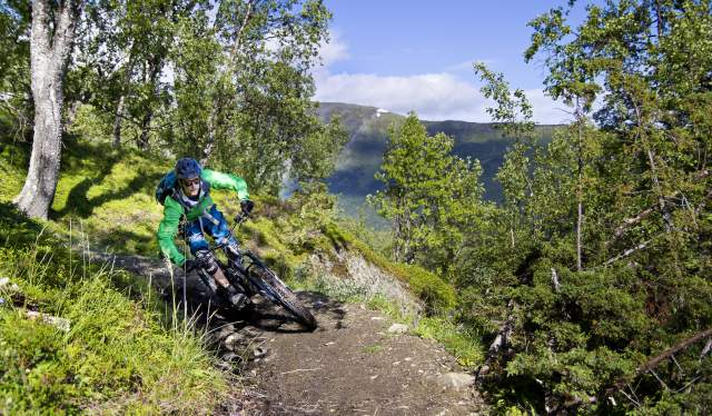 A man mountain biking in the Lyngenfjord region in Northern Norway, in the mountains
