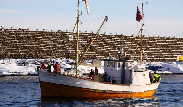 A fishing boat participating in The world cod fishing championship in Lofoten, Northern Norway