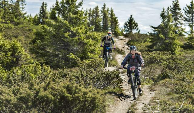 Two people cross-country biking in Hafjell, Eastern Norway