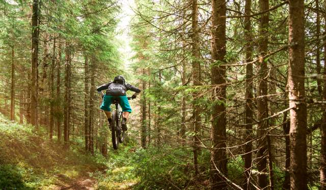 A person trail cycling in a forest in Trysil, Eastern Norway