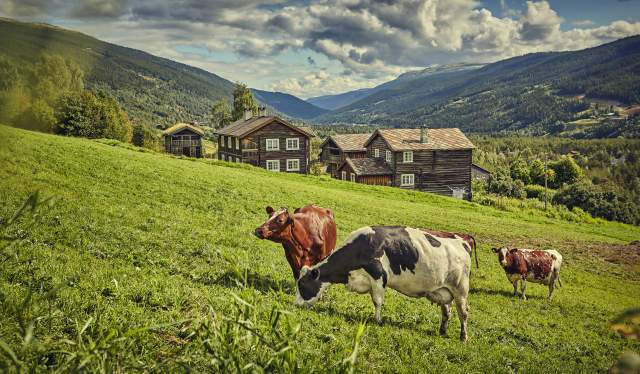 The mountain farm Heidal Ysteri in the Gudbrandsdalen Valley of Eastern Norway