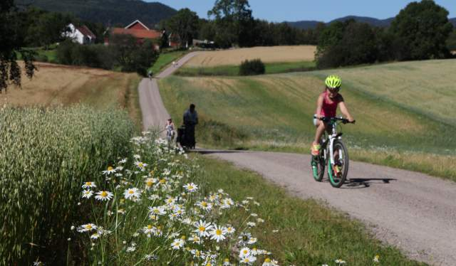 A person cycling in the Maridalen valley in Oslo, Eastern Norway