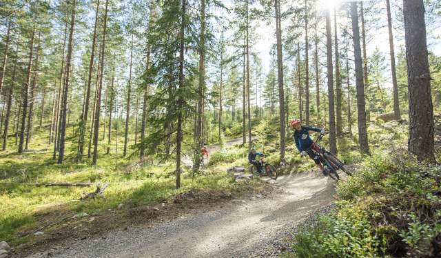 A child mountain biking in Trysil bike arena in Eastern Norway