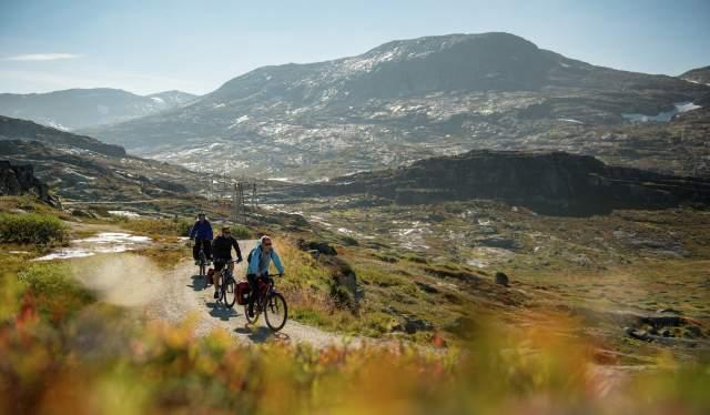 Fietsers op de fietsroute Rallarvegen in Fjord-Noorwegen