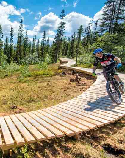 People mountain biking in the Magic Moose in Trysil bike arena, Eastern Norway