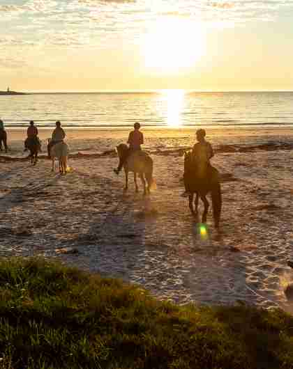 People horseback riding at a beach at sunset in Lofoten, Northern Norway