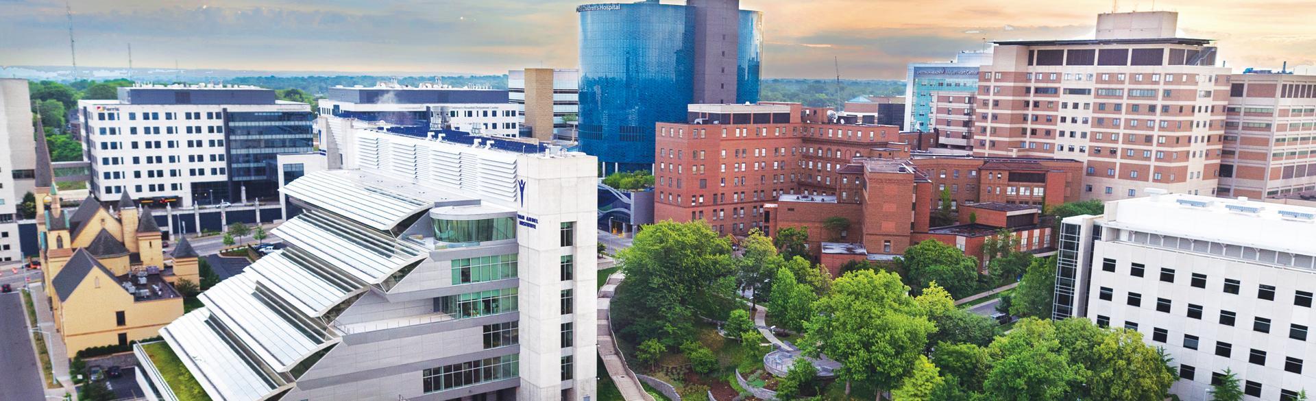 Grand Rapids Cityscape - Medical Mile