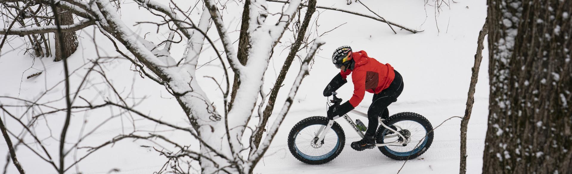 Riding a fat bike through wintry trails.