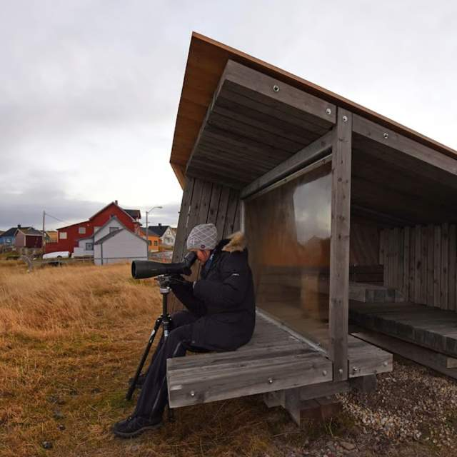 A person making pictures at a birdwatching shed near the water at Ekkerøy, Troms, Northern Norway