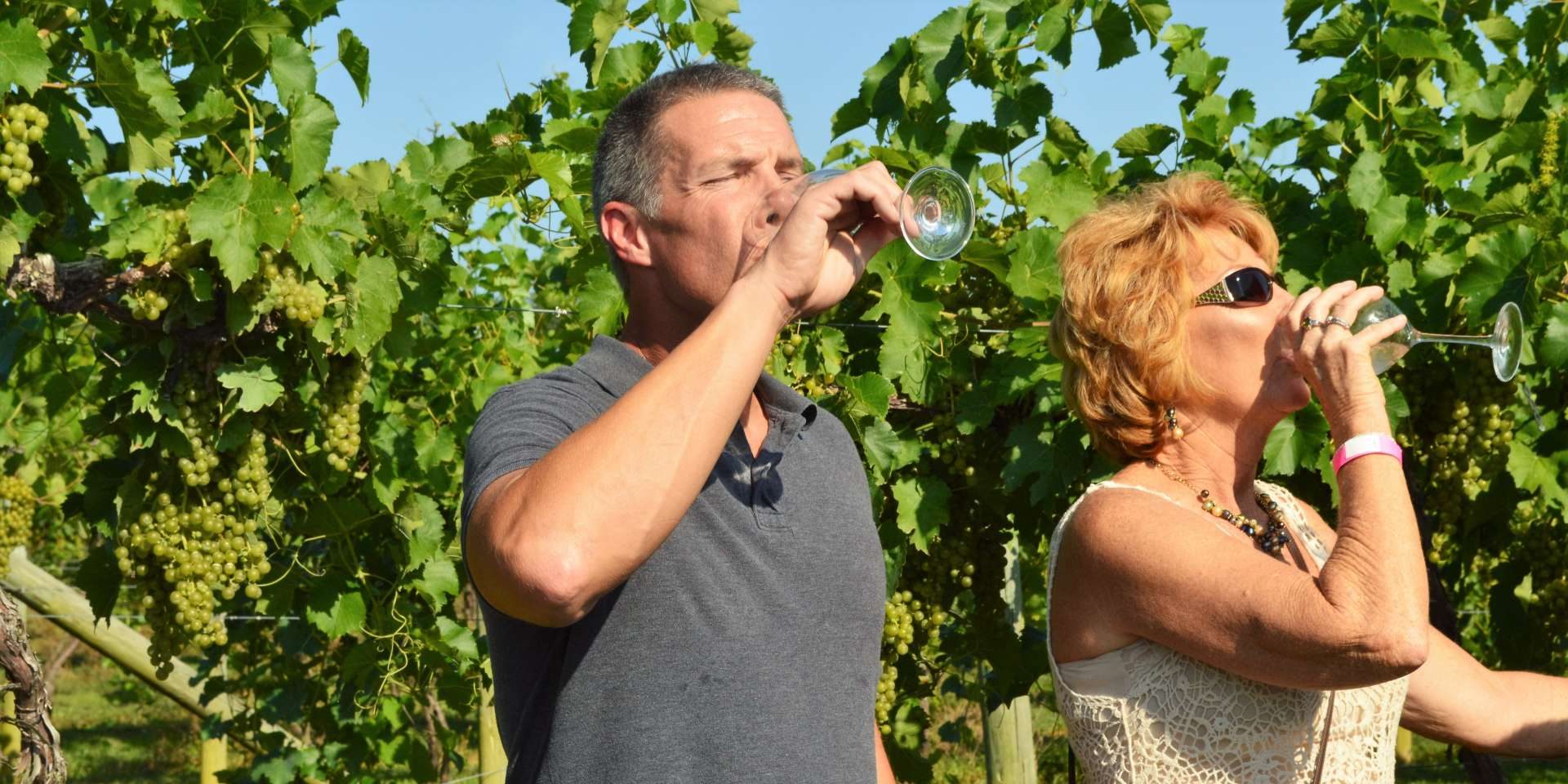 Wine drinkers in vineyard