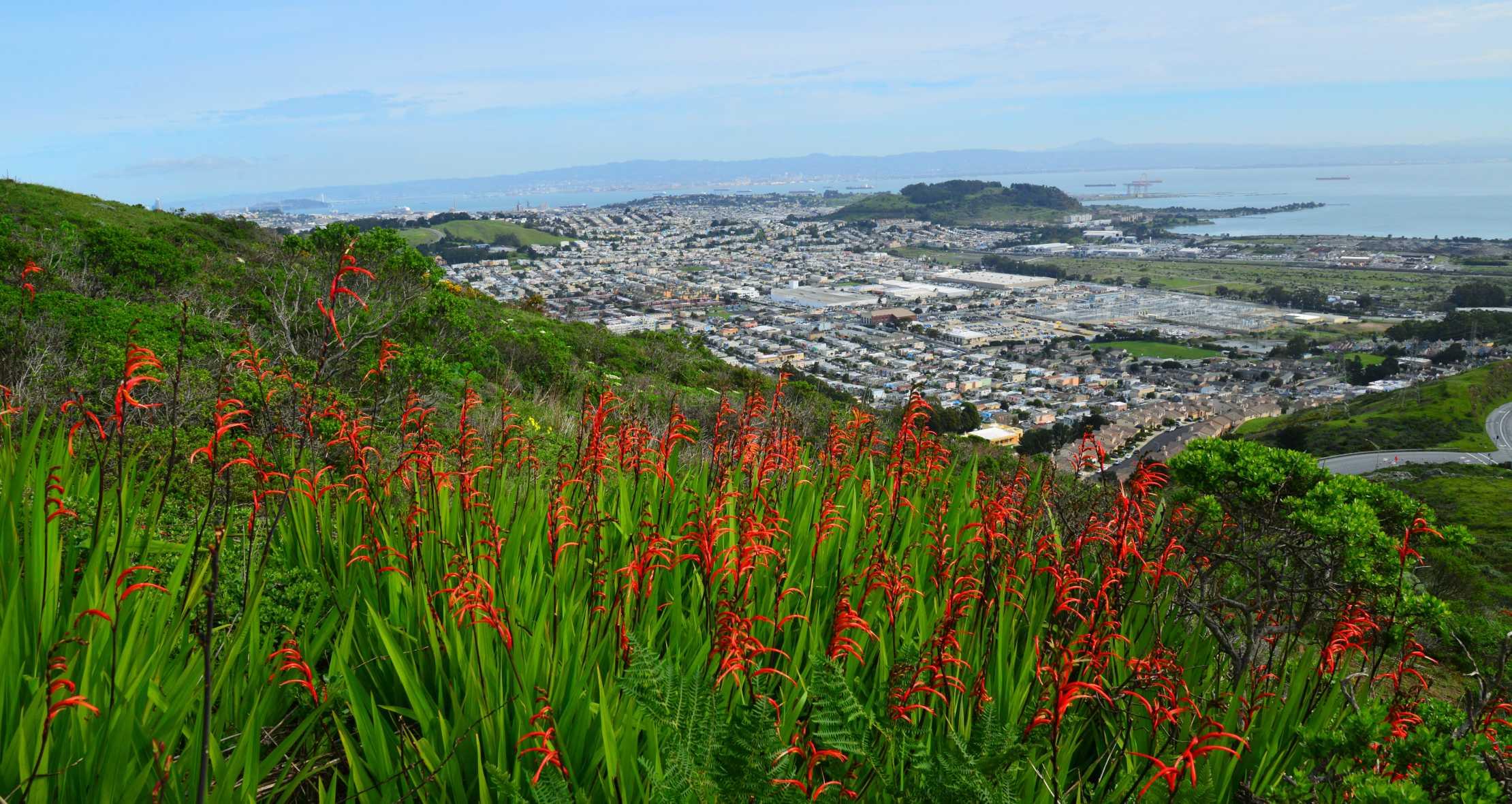 Sanbruno Mountain View Sanmateocounty Siliconvalley