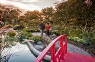 Copy of Wilmington Arboretum Fall Ad Shoot