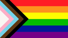 Rainbow Flag with Pink, Blue, Black and Brown
