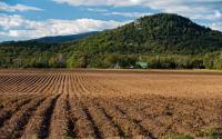Farm Land - Averyville Ln - Lake Placid