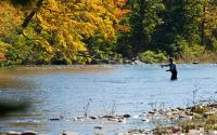 Fly Fishing on Esopus Creek