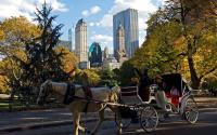 Central Park Hansom Ride