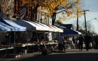 Farmers Market in Brockport