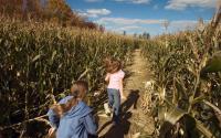 Becker Farms 1813