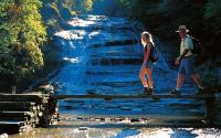 Buttermilk Falls State Park - Ithaca
