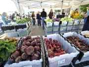 Alaska grown vegetables at farmers market