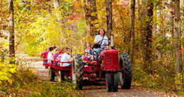 Herndon - Frying Pan Farm Park - Tractor - Family
