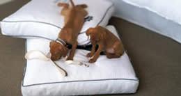 Heavenly Pet Beds