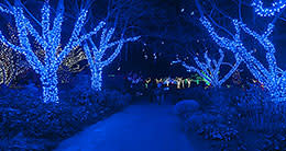 Winter Walk of Lights - Meadowlark Botanical Gardens