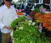 Monterey: Shopping