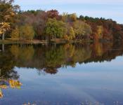 Carson Park