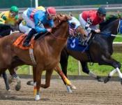 Delaware Park Racing, Slots, Casino