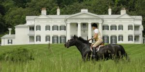 Horse at Morven Park