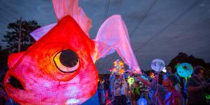Lantern Parade giant goldfish