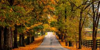 Old Frankfort Pike in the Fall