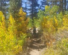 Green Lake Hike Fall Colors