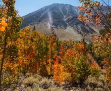 Hilton Creek Trail on September 11, 2016 - Photo by Greg Newbry
