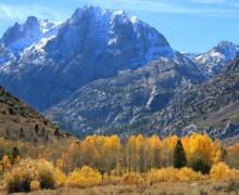 Carson Peak Fall Colors