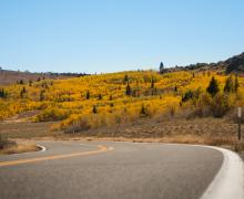 Monitor Pass road and fall colors