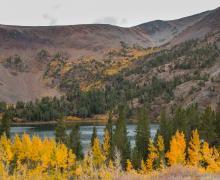 Virginia Lakes Peaking fall colors