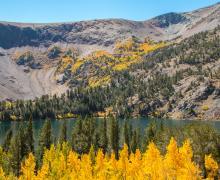 Virginia Lakes Fall Colors