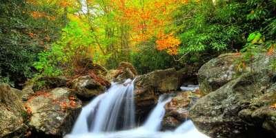 Fall Photo Contest Winners