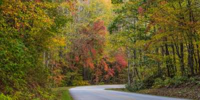 Blue Ridge Parkway near Chestnut Cove Fall 2017