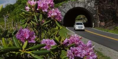 Blue Ridge Parkway Tunnel Summer