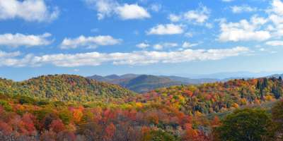 asheville s 2017 fall foliage report new fall highlights
