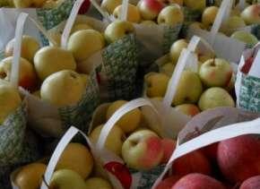 apples at Schmuckers Copy 300x225
