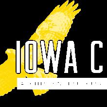 Filled In Logo - Hawk
