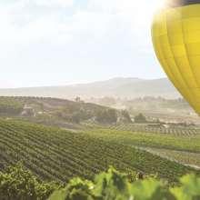 Hot Air Balloon Over Temecula Vineyards