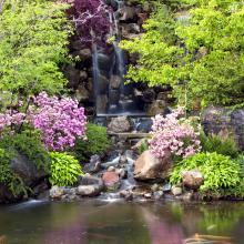Anderson Japanese Gardens Waterfall
