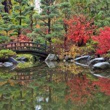 Anderson Japanese Gardens Bridge