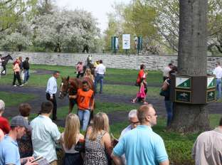 Saddling Ring at Keeneland Race Course