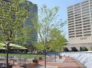 Triangle Park in the Spring